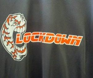 Lockdown Adult Softball